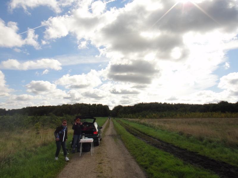 Vestegnsmarathon 2011 - pictures - Tor Rønnow