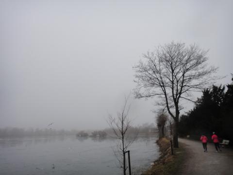 Damhussøens Cannonballmarathon 18-feb-2012 - pictures