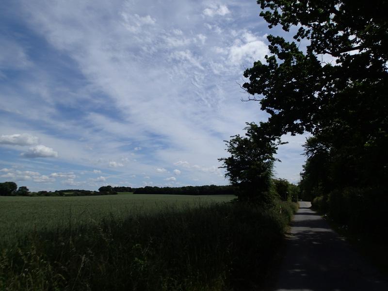 Storebælt Naturmaraton 2016 - Tor Rønnow