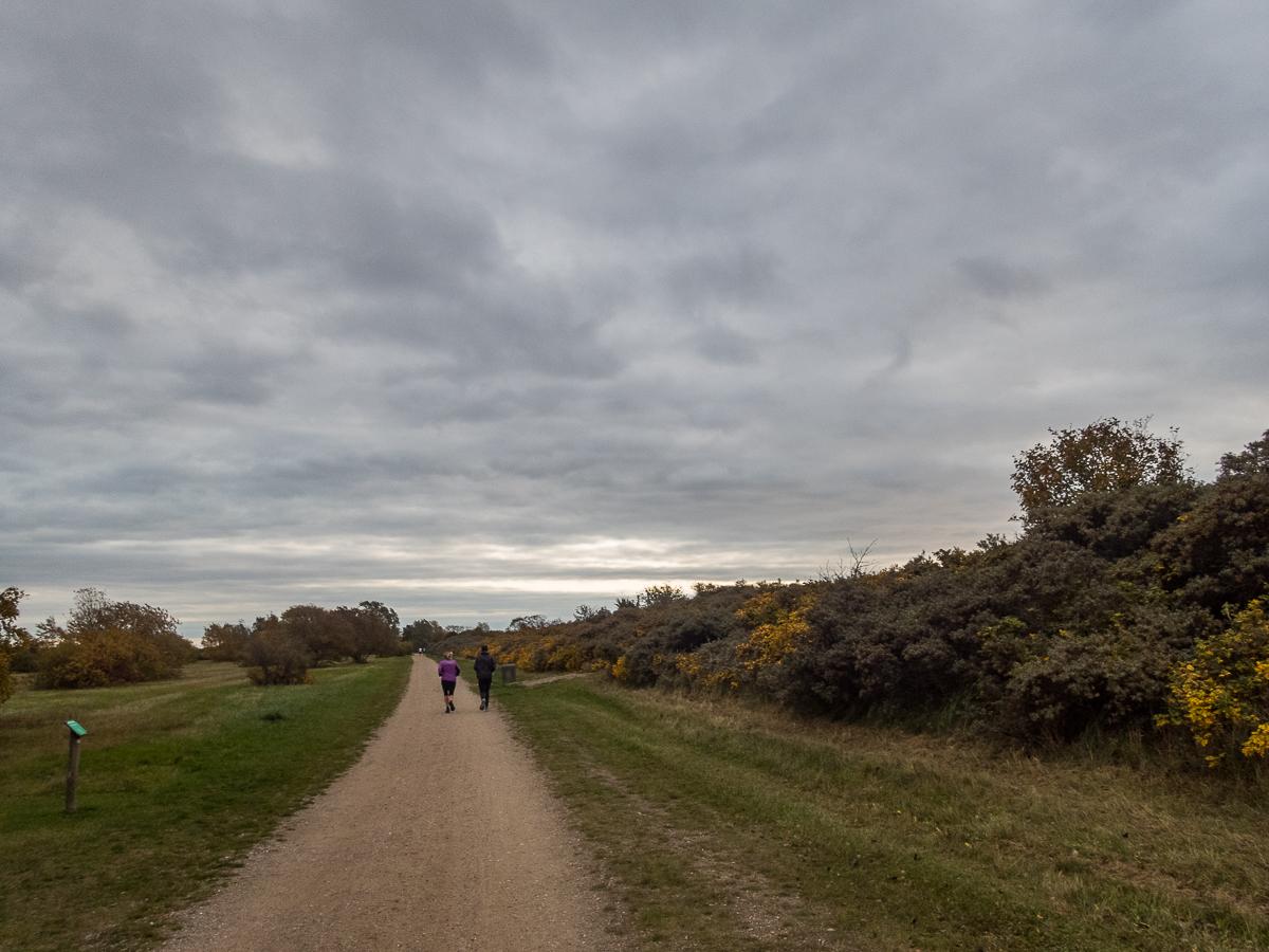 Moffes Maraton - Strandløbet 2020 - Tor Rønnow