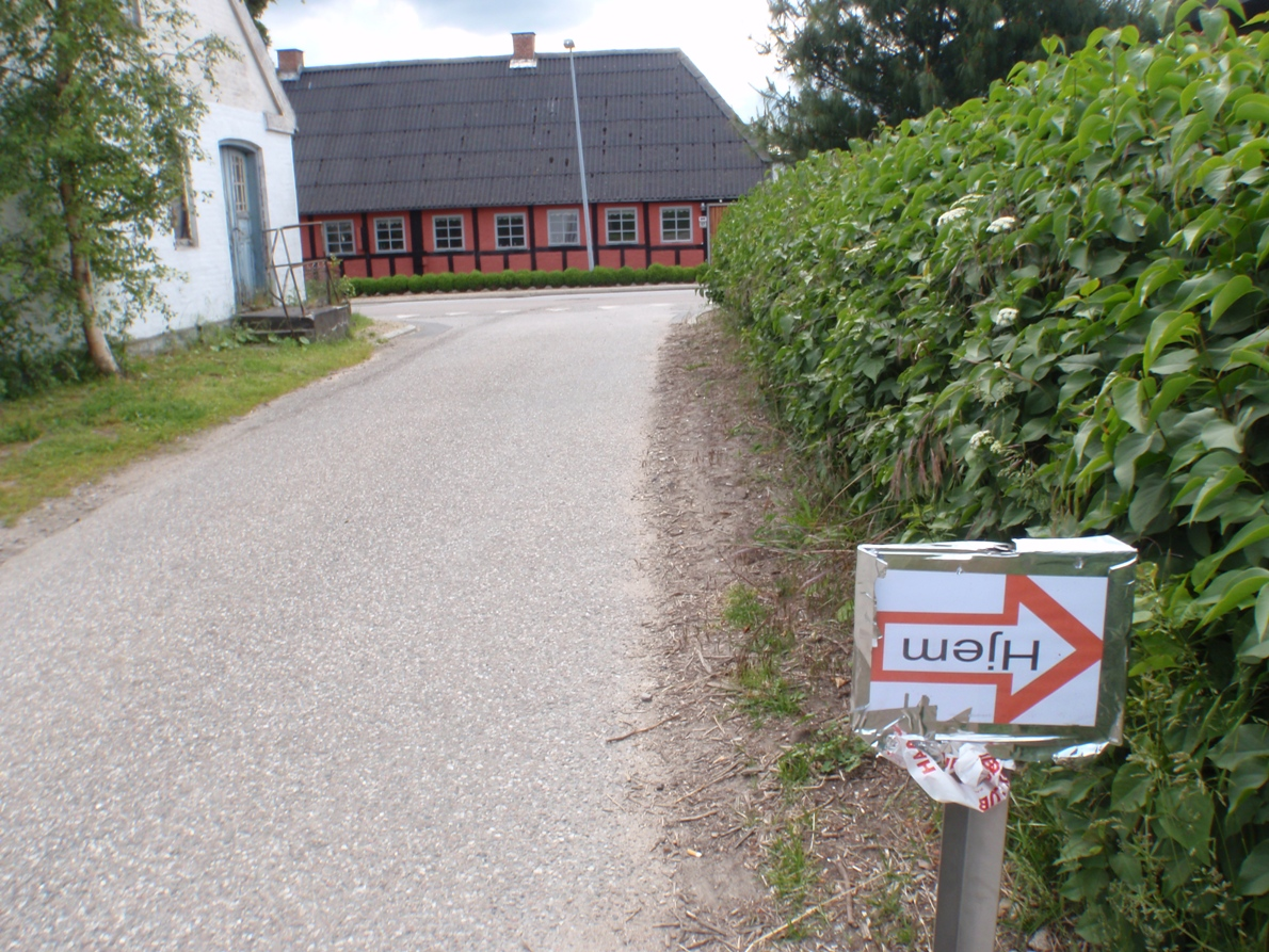 Beer (Ølmarathon) Marathon Pictures - Tor Rønnow