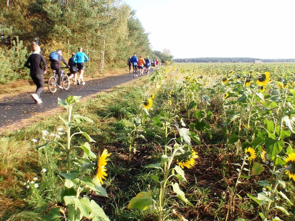 Heide-Elbe marathon 2009 Pictures - Tor Rønnow