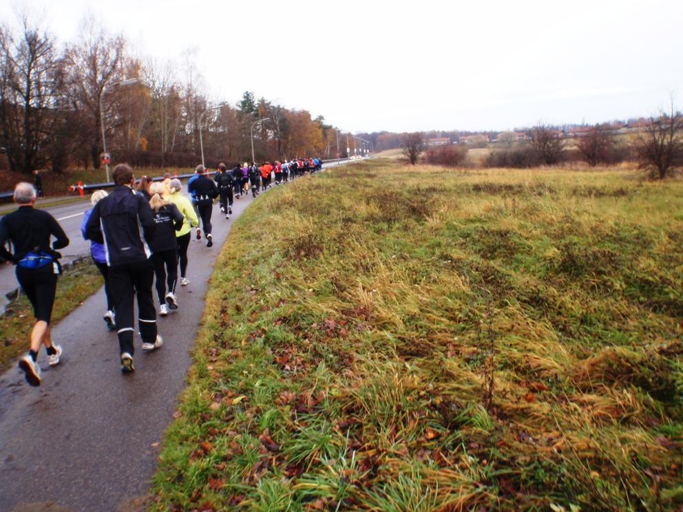 Pictures GARMIN Rudersdal 8 marathon 2009 Pictures - Tor Rønnow